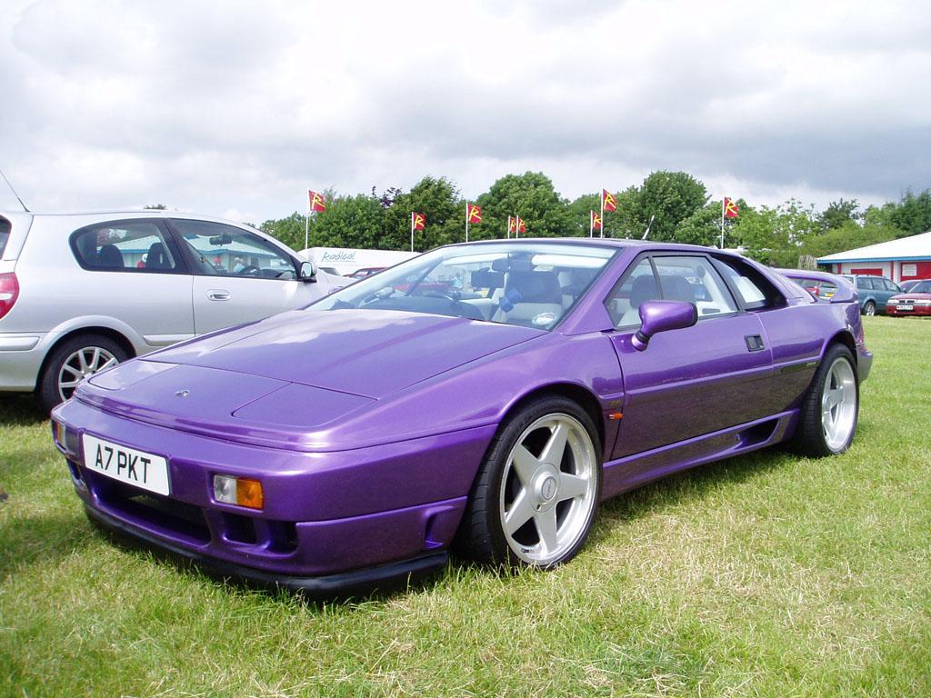 Purple%20Rain.JPG
