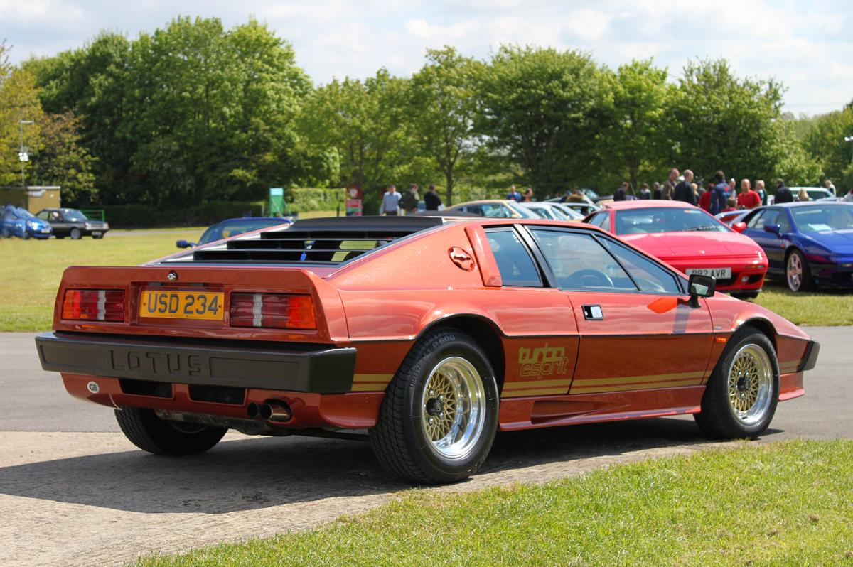 https://www.lotusespritturbo.com/Lotus_Turbo_Esprit_Bronze_1980_Rear.JPG